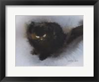 Framed Black Kitten