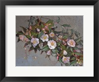 Framed Camellia Quintessence