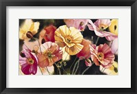 Framed Iceland Poppies