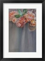 Framed Roses Heritage