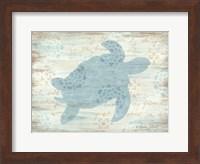 Framed Ocean Turtle