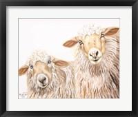 Framed Ba Ba White Sheep