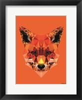 Framed Geometric Fox