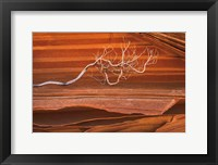 Framed Coyote Buttes III