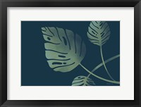 Framed Monstera V
