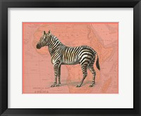 Framed African Animals on Coral IV