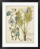 Eloquent Botanical I Framed Print