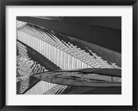 Framed Varied Shapes II