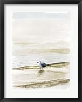 Framed Coastal Gull II