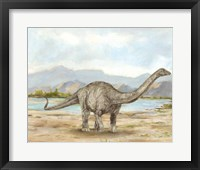 Framed Dinosaur Illustration V