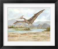Framed Dinosaur Illustration VI