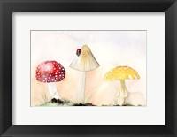 Framed Faerie Mushrooms I