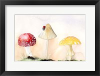Framed Faerie Mushrooms I