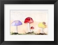 Framed Faerie Mushrooms II