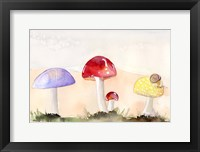 Framed Faerie Mushrooms II