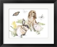Framed English Bunnies II