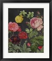 Framed Redoute's Bouquet II