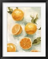 Framed Fresh Citrus V