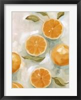Framed Fresh Citrus VI