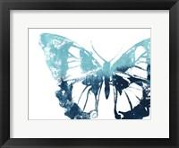 Framed Butterfly Imprint I
