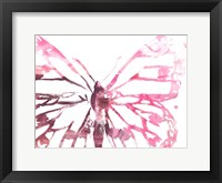 Framed Butterfly Imprint II