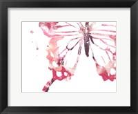 Framed Butterfly Imprint IV