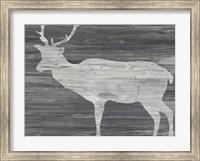 Framed Vintage Plains Animals III