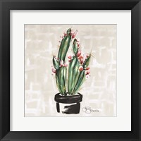 Framed Blooming Cactus