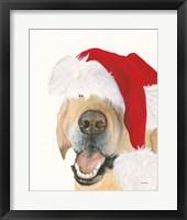 Framed Santa Ruff