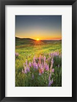 Framed Prairie Sunrise