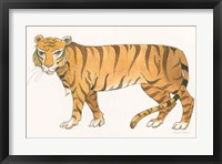 Framed Big Cats IV