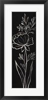 Framed Black Floral III Crop