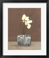 Framed Orchids with Curly Willow