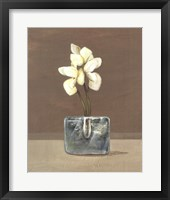 Framed Orchids in Glass