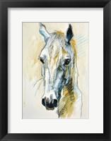 Framed Horse Head