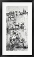 Framed Equine Life 4