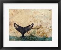 Framed Hawaiian Whale Fluke 1.0