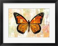 Framed Monarch No. 1.0