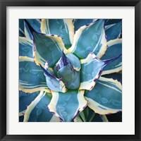 Framed Elegant Thorns