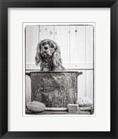 Framed Vintage Puppy Bath