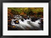 Framed Bridal Veil Creek, Oregon