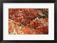 Framed Hoodoos, Bryce Canyon
