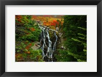 Framed Myrtle Creek, Mt. Rainier