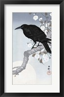 Framed Crow at Full Moon, 1900-1930