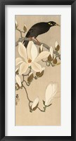 Framed Myna on Magnolia Branch, 1900-1910