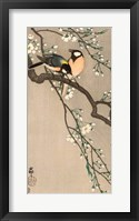 Framed Songbirds on Cherry Branch, 1900-1910