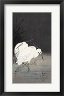 Framed Two Egrets in the Reeds, 1900-1930