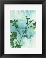 Framed Leaves and Sky