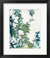Framed Shadow Floral
