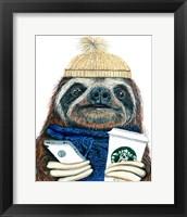 Framed Urban Sloth